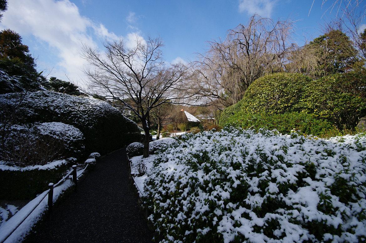 雪の退蔵院..._f0152550_1935726.jpg