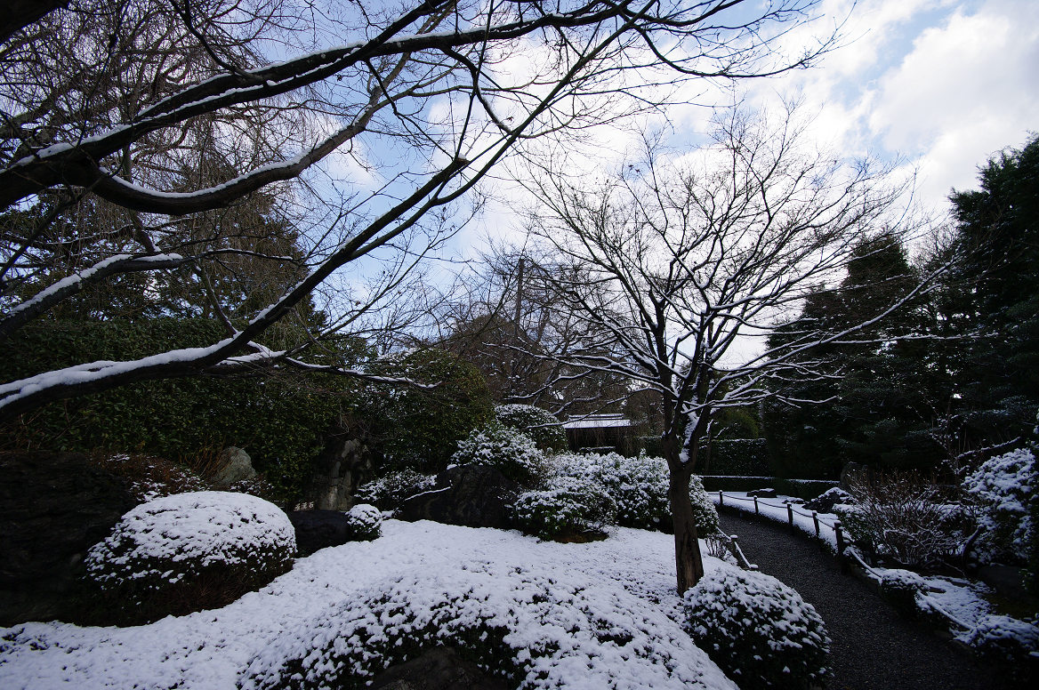 雪の退蔵院..._f0152550_19372871.jpg