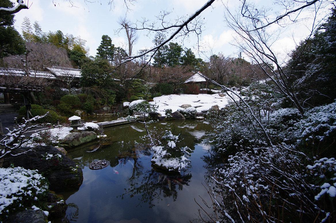 雪の退蔵院..._f0152550_19374587.jpg