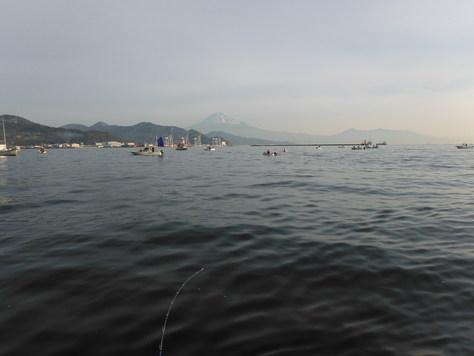 清水港は大賑わい!!_f0175450_1918654.jpg