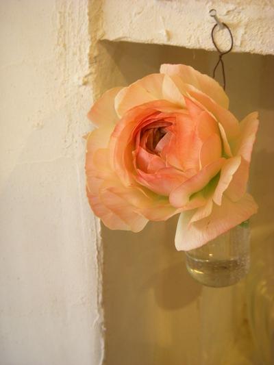 春のお花の愉しみかた。。。_a0229658_12592938.jpg