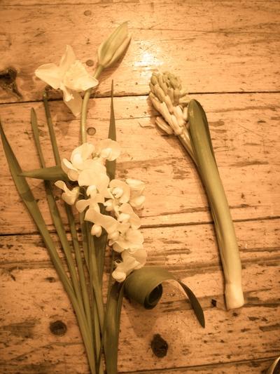 春のお花の愉しみかた。。。_a0229658_1334359.jpg
