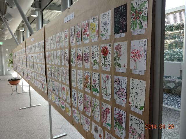 花の絵手紙展に行ってきました_a0220570_23171170.jpg