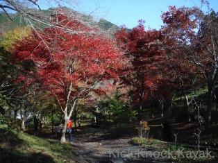 長瀞→御岳  SD SPORTS来たる 2013_f0164003_15531189.jpg