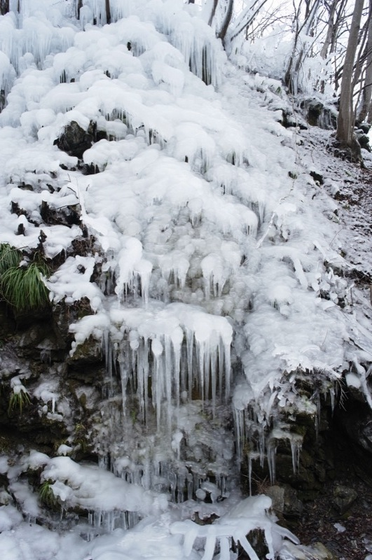 氷の世界_e0276411_18255938.jpg