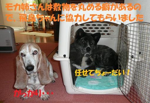 f0121712_7175320.jpg
