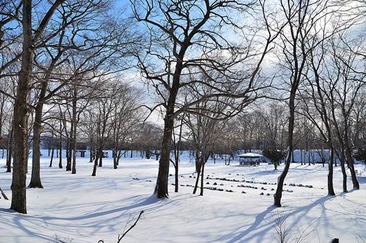 2014年1月27日(月):雪の後の晴天[中標津町郷土館]_e0062415_19125422.jpg