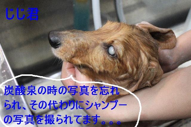 b0130018_2247537.jpg
