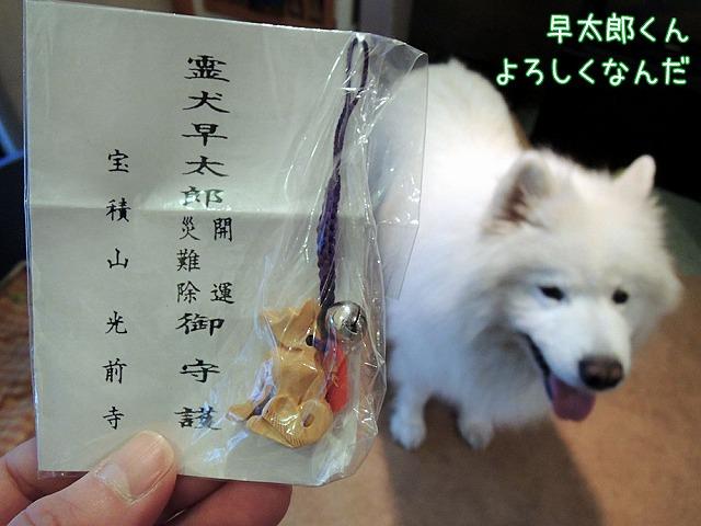 誕生日のお散歩_c0062832_7131015.jpg