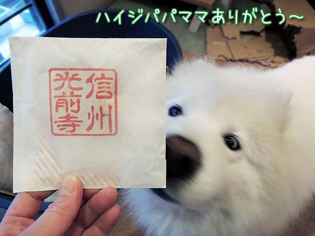 誕生日のお散歩_c0062832_713683.jpg