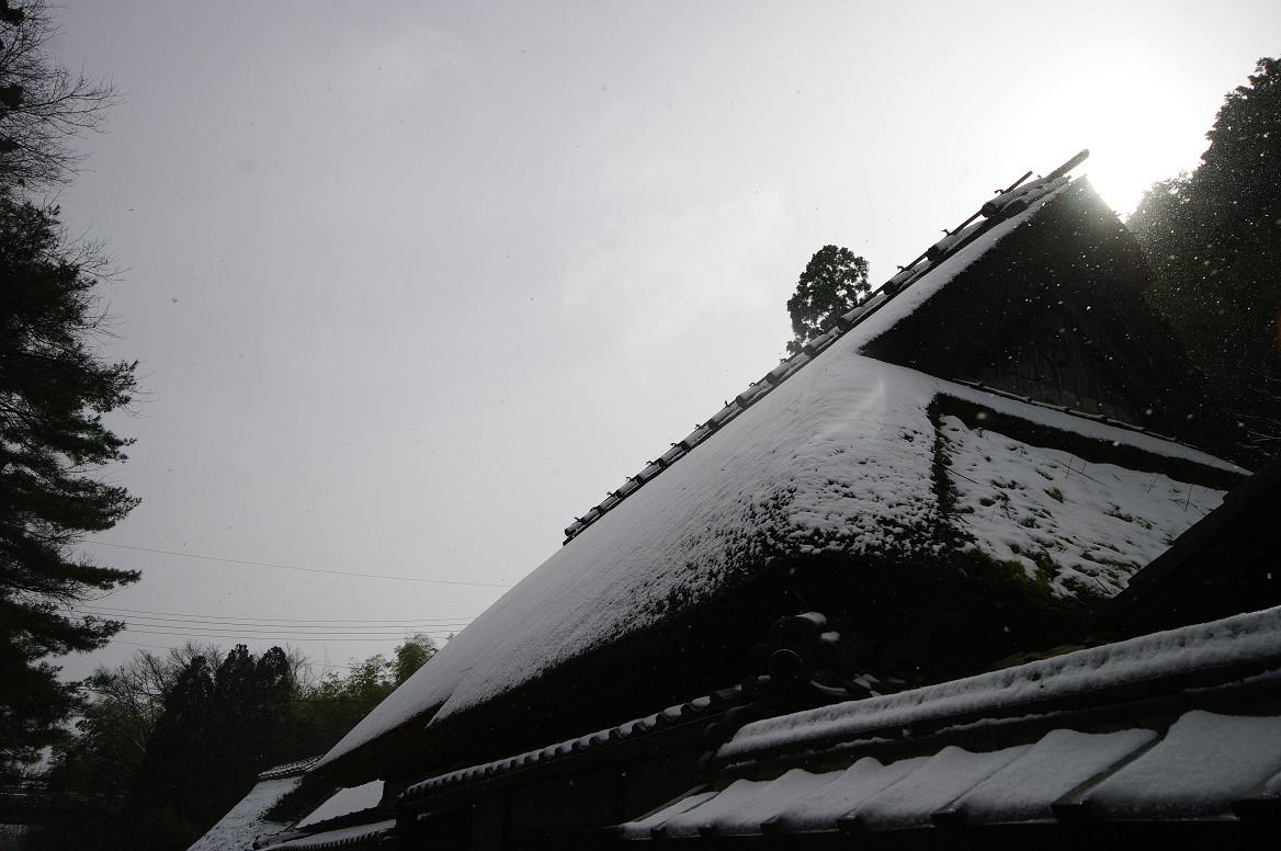 雪の鳥居本..._f0152550_23195623.jpg