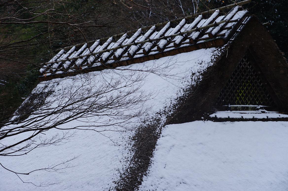雪の鳥居本..._f0152550_2324373.jpg