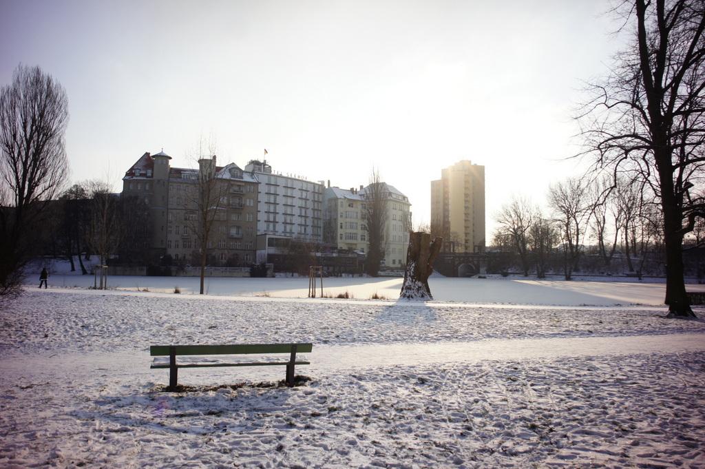 -13℃の土曜日。_c0180686_02252004.jpg