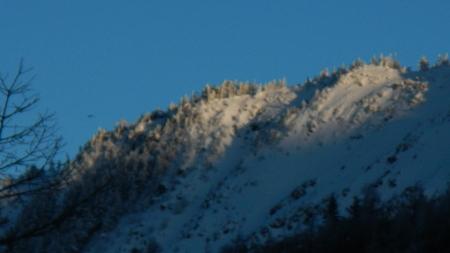 登山道情報_e0120896_802865.jpg
