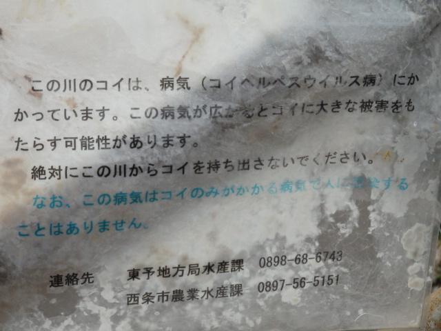 f0231709_1664651.jpg