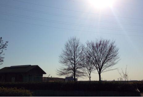 彩湖でランニング2014年 ③_b0203925_1735090.jpg