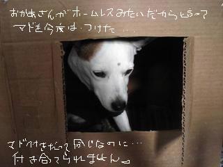 d0269832_11435038.jpg