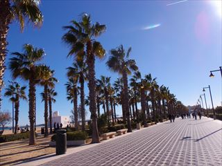 今度こそ、、、海@Valencia_e0120938_06260129.jpg