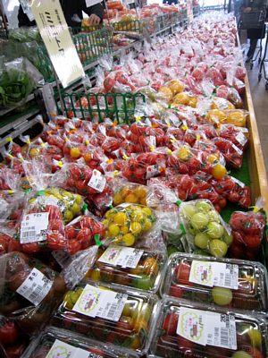 トマトの品揃え_c0141652_1612534.jpg