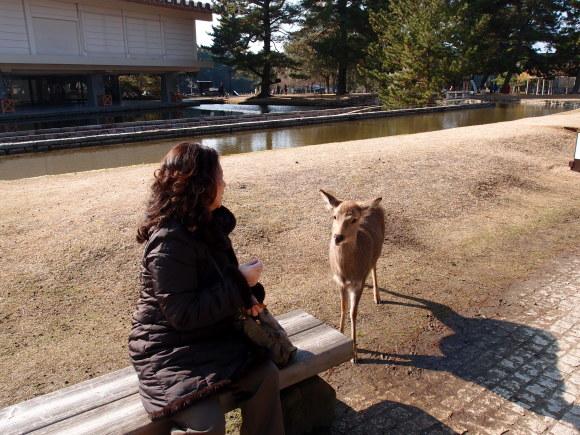 京都    3日目_f0158364_18100354.jpg