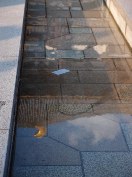 京都    3日目_f0158364_18132311.jpg