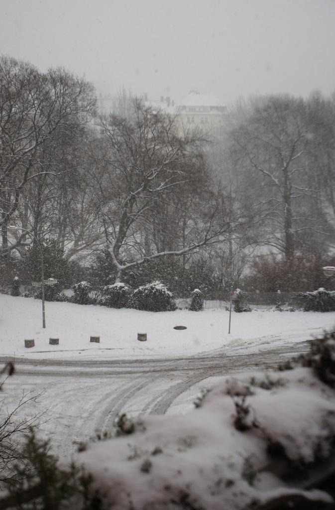 月曜日、ベルリンは大雪。_c0180686_01460541.jpg