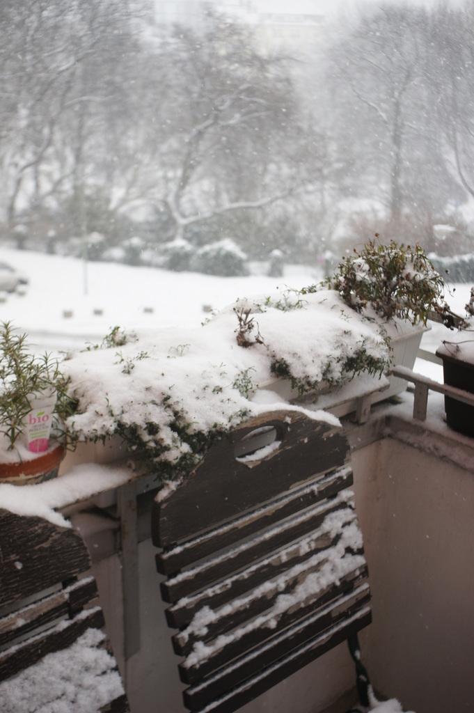 月曜日、ベルリンは大雪。_c0180686_01461613.jpg
