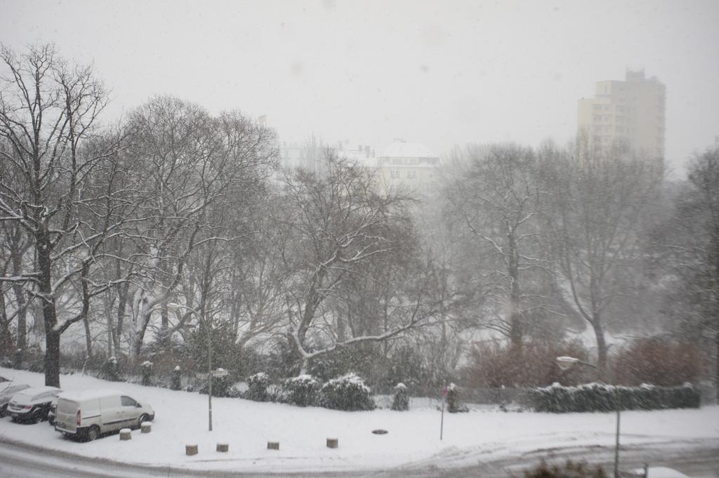月曜日、ベルリンは大雪。_c0180686_01462883.jpg