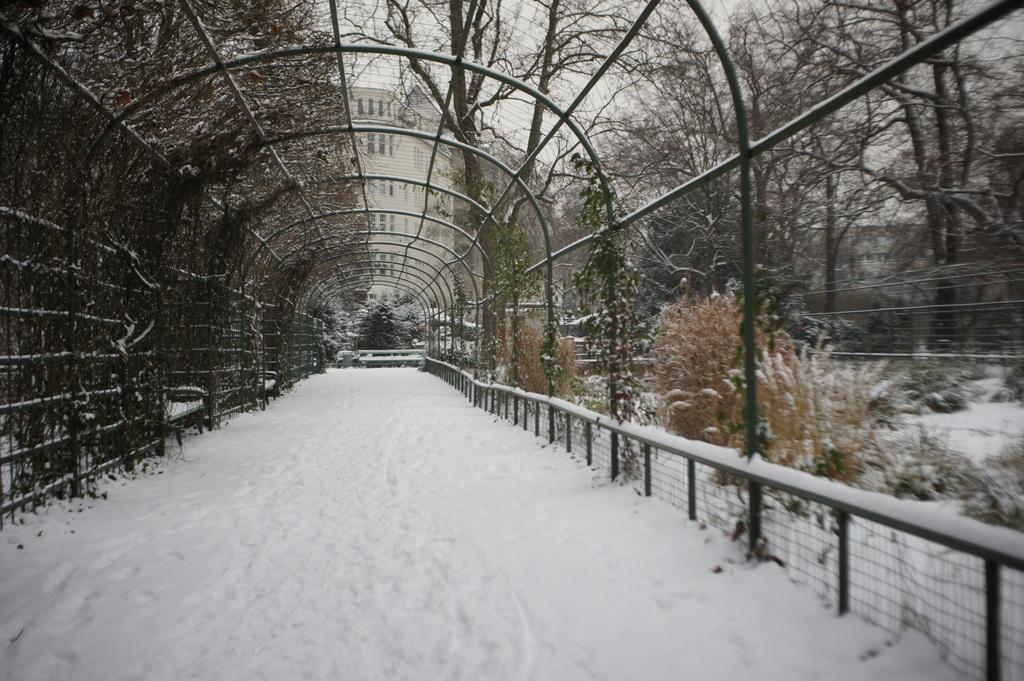 雪のベルリン。_c0180686_23081357.jpg