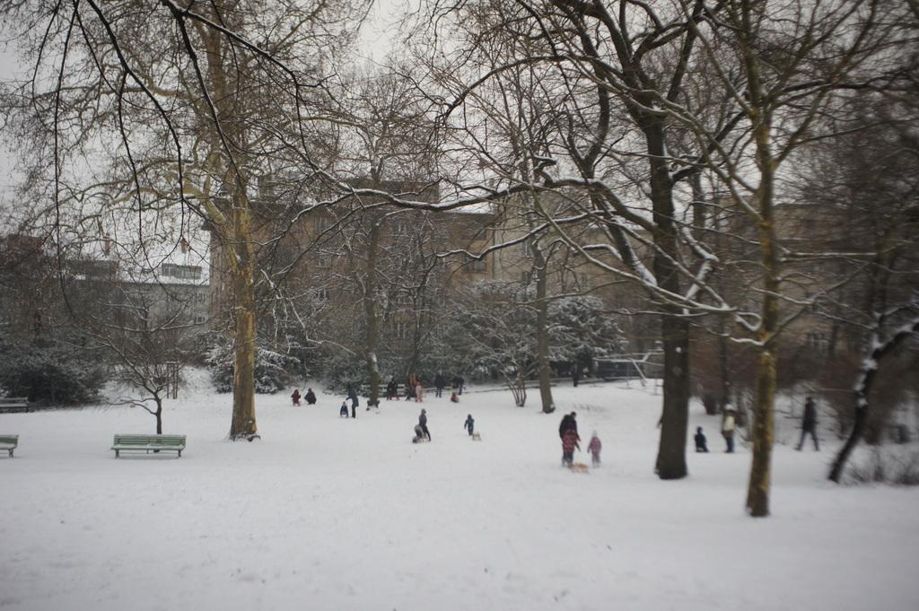 雪のベルリン。_c0180686_23094409.jpg