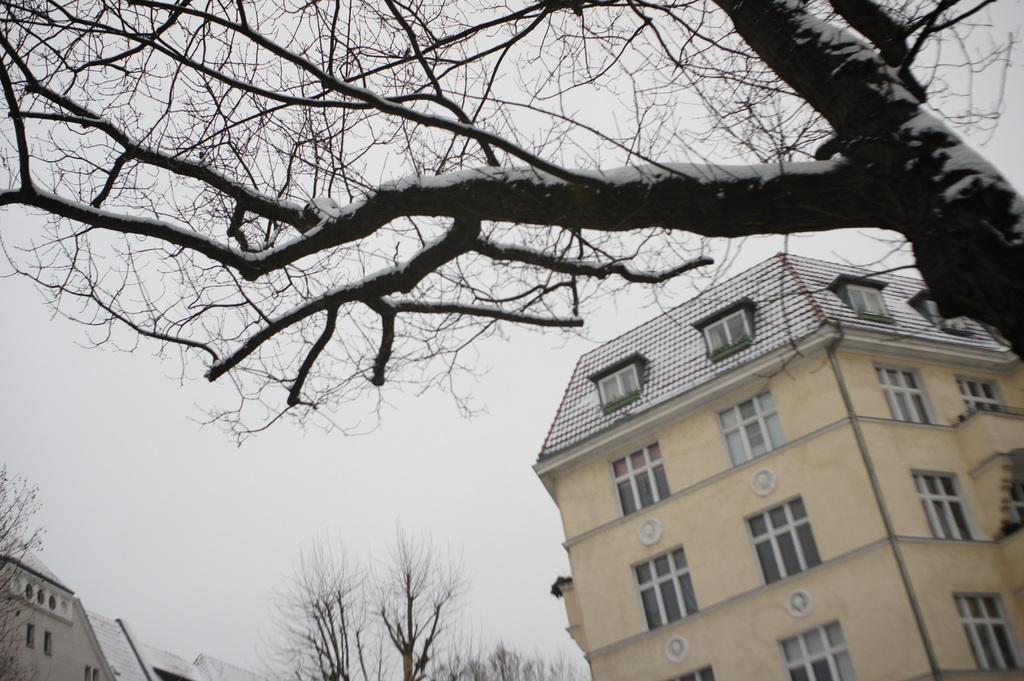 雪のベルリン。_c0180686_23104000.jpg