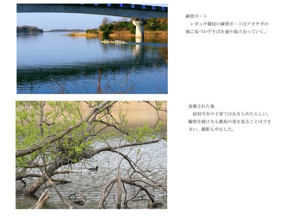 b0236595_9533968.jpg