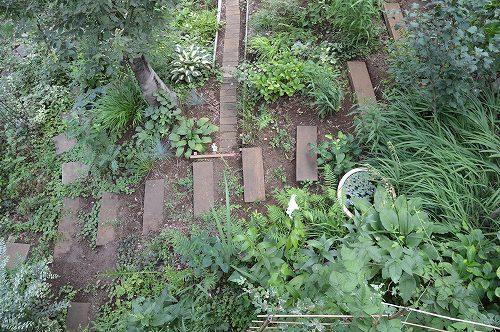 2013年 7月の庭…_c0124100_0572531.jpg