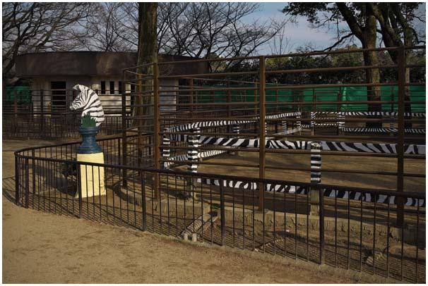 姫路zoo_d0272207_170749.jpg