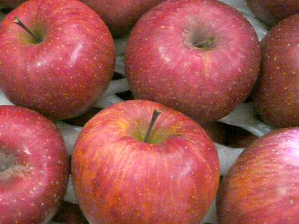果物はお取り寄せ_d0020309_1263197.jpg