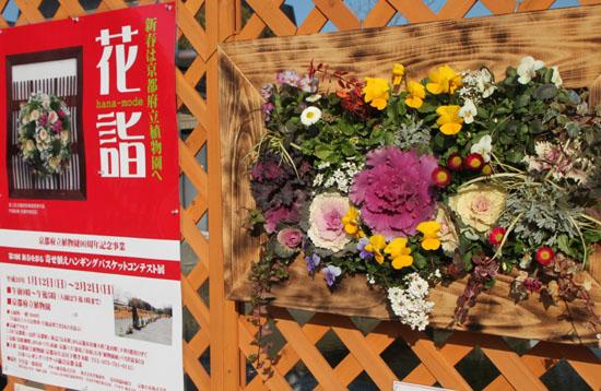 府立植物園 花詣_e0048413_2111824.jpg