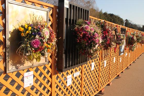 府立植物園 花詣_e0048413_211573.jpg