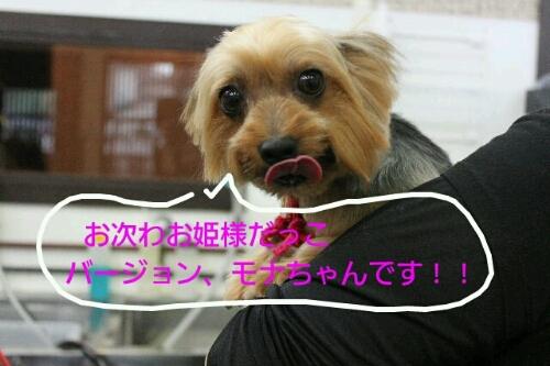 やばいでーす!!わら_b0130018_053495.jpg