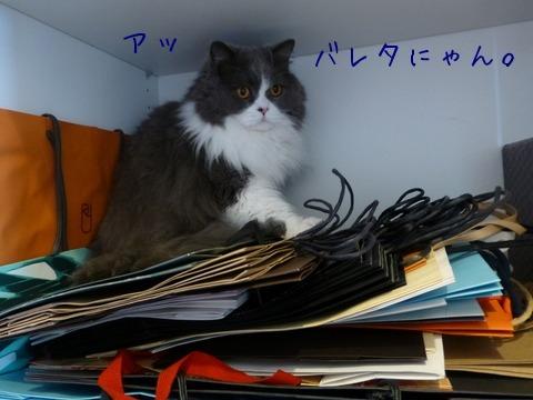 紙袋好き_e0237625_18101090.jpg