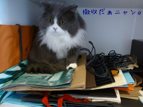 紙袋好き_e0237625_18105279.jpg