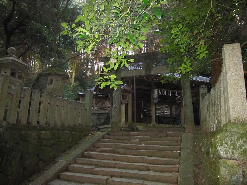 古代歴史を感じさせる【等彌(とみ)神社】_e0237645_11444029.jpg