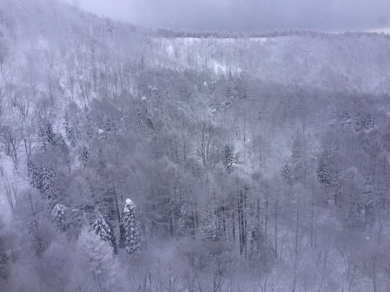 スキー(蔵王)_e0233674_21323361.jpg