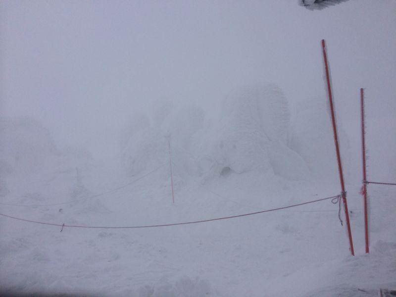 スキー(蔵王)_e0233674_2132390.jpg