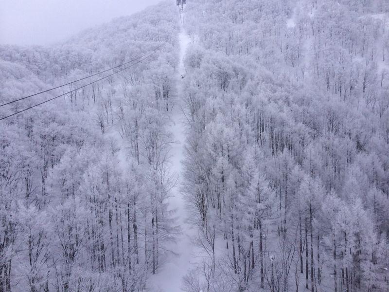 スキー(蔵王)_e0233674_2132434.jpg