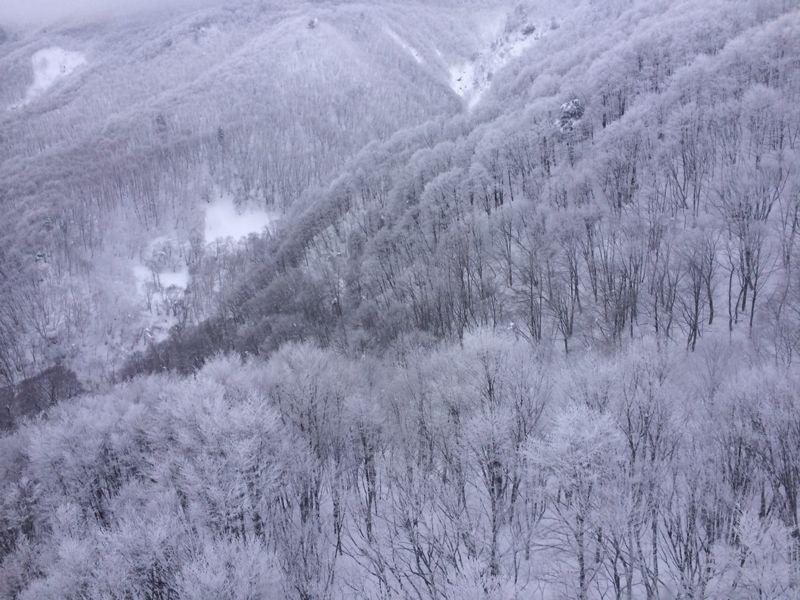 スキー(蔵王)_e0233674_2132519.jpg