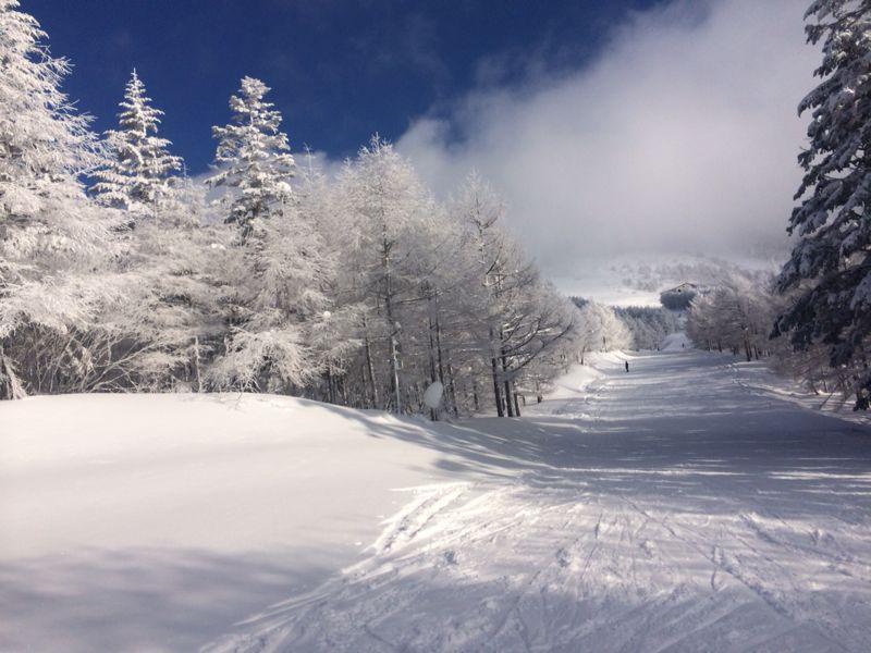 スキー(蔵王)_e0233674_21325981.jpg