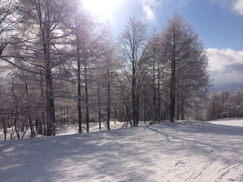 スキー(蔵王)_e0233674_21331684.jpg