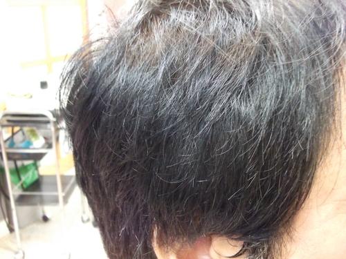 白髪ぼかし!_f0304030_1459032.jpg