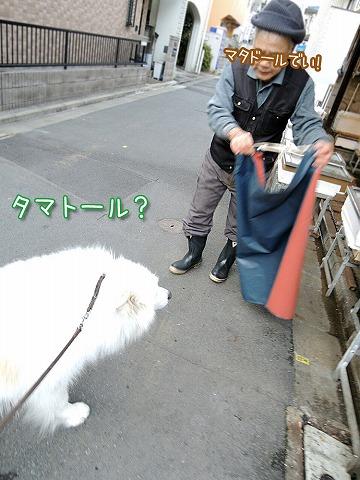 真昼の決闘_c0062832_9263593.jpg