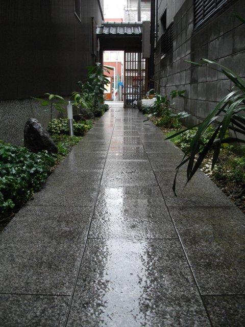 雨宿り_e0230141_1229175.jpg